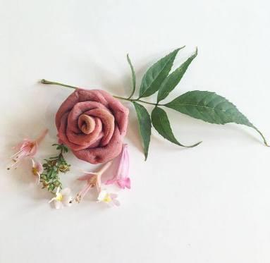 bread roses 13